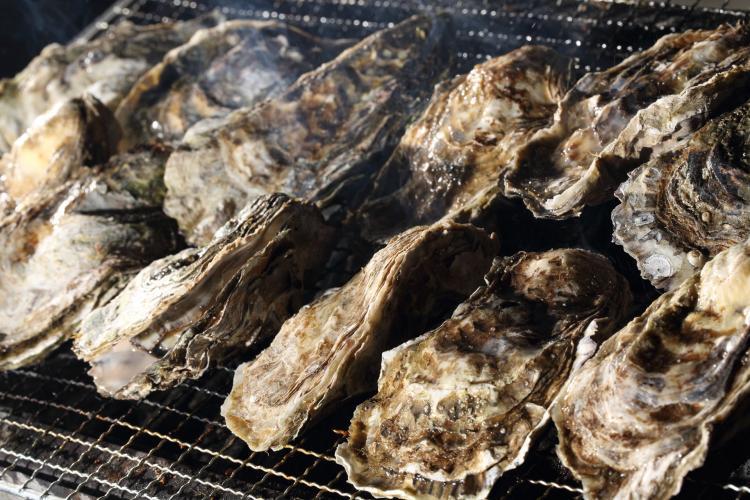 松島大漁牡蠣祭in磯島