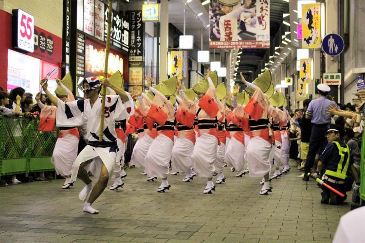 高円寺阿波舞祭