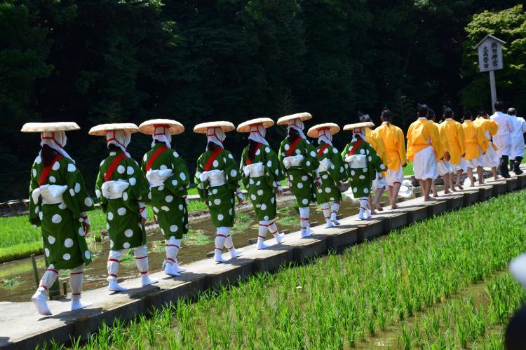 大高齋田御田植祭(冰上姉子神社)