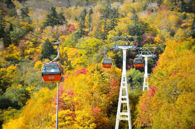 札幌國際滑雪場紅葉貢多拉