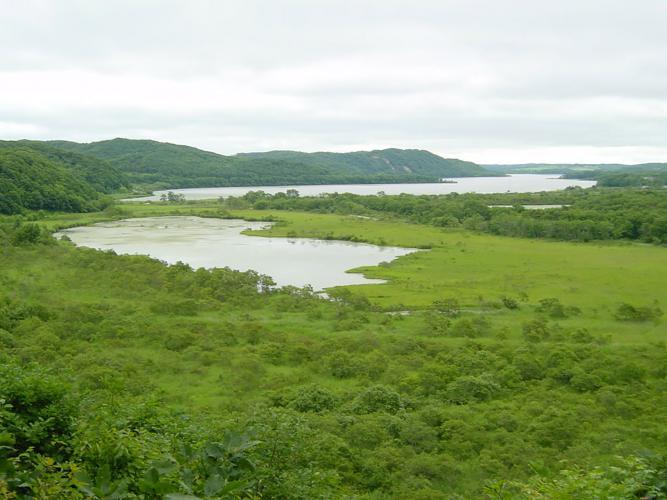 釧路濕原(二本松展望地)