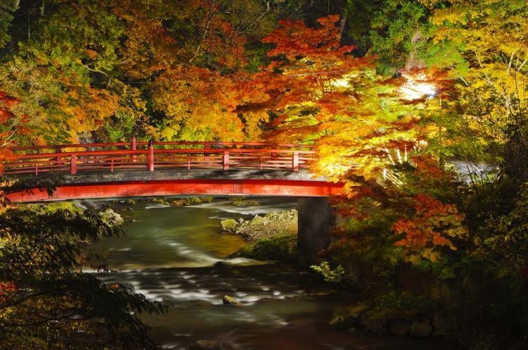 中野楓葉山(中野神社)