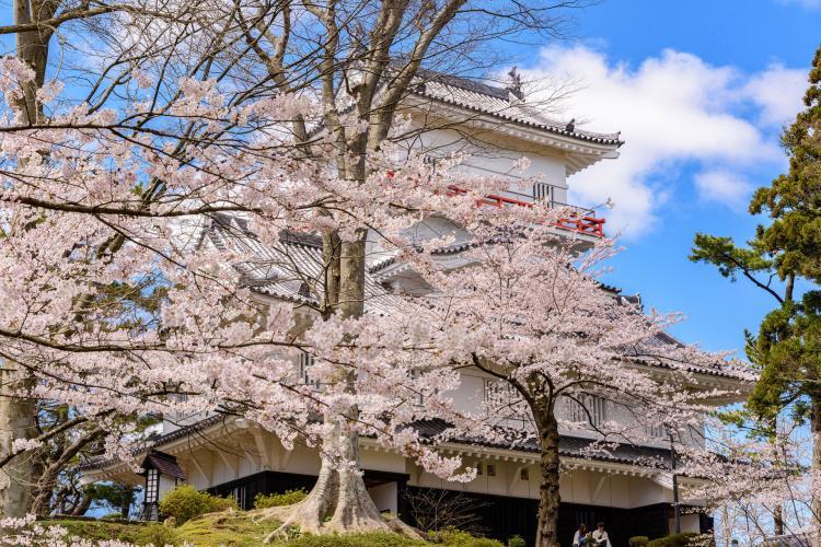 千秋公園(久保田城)
