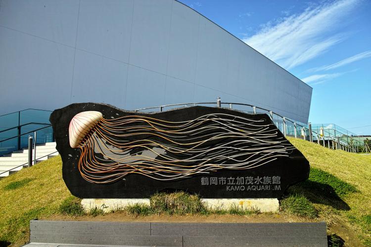 鶴岡市立加茂水族館(水母水族館)