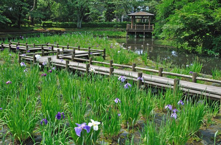 鶴岡公園(大寶館)