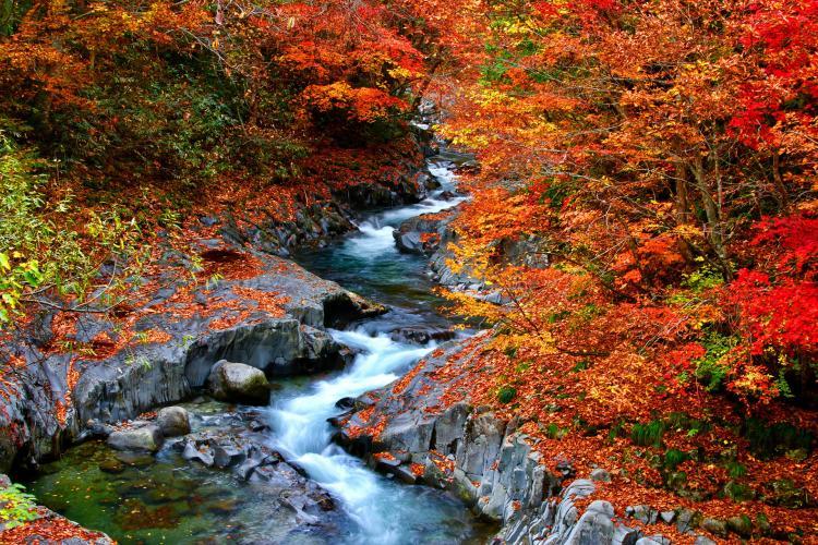 中津川溪谷
