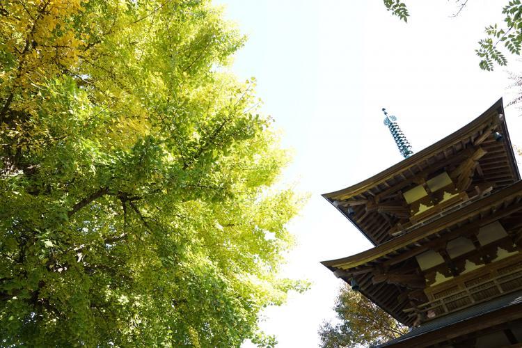 惠隆寺觀音堂