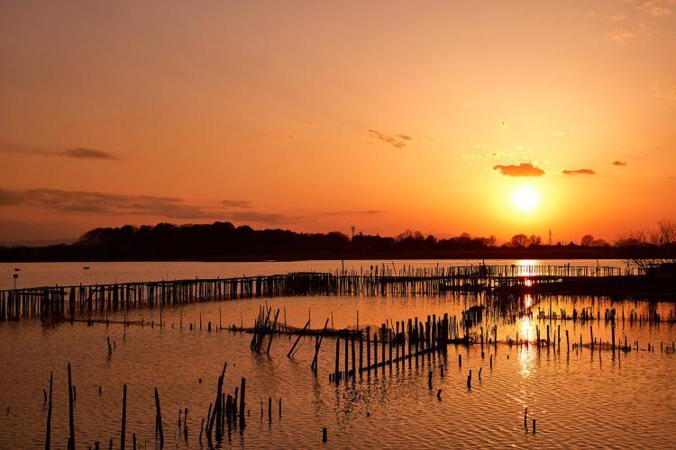 多多良沼公園