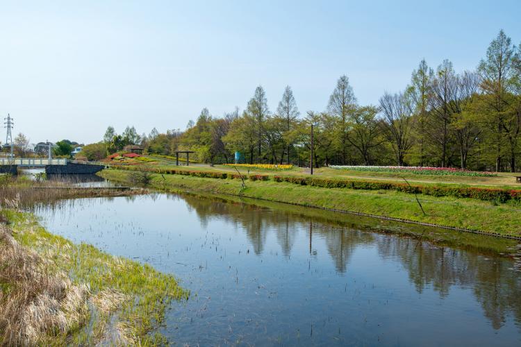大宮花之丘農林公苑