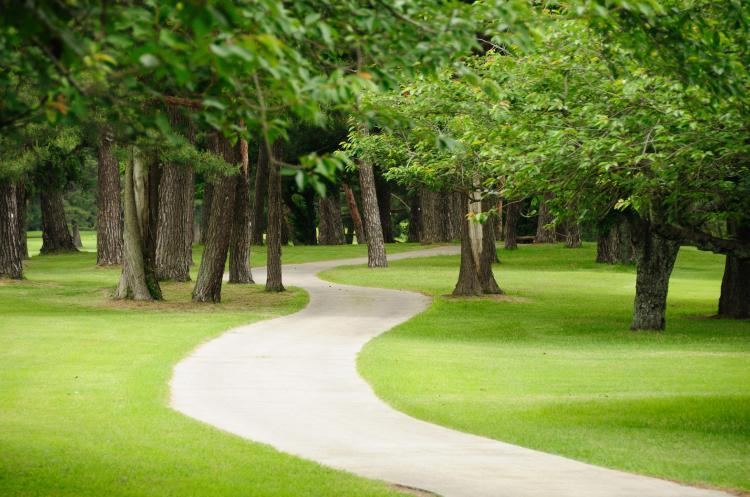 昭和之森公園