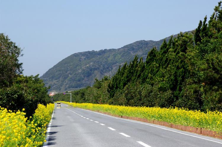 房總Flower Line