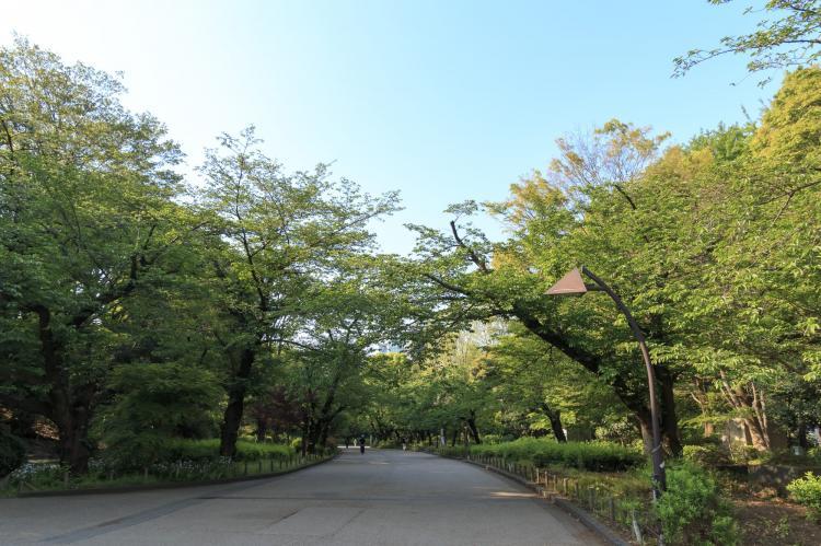 上野公園(上野恩賜公園)