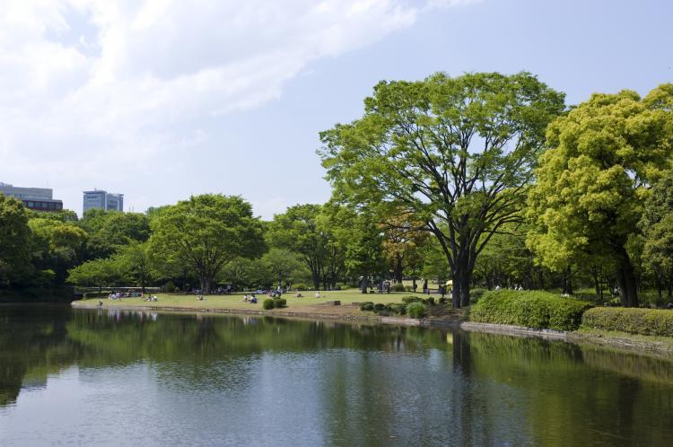 千鳥之淵(日本武道館・北之丸公園)