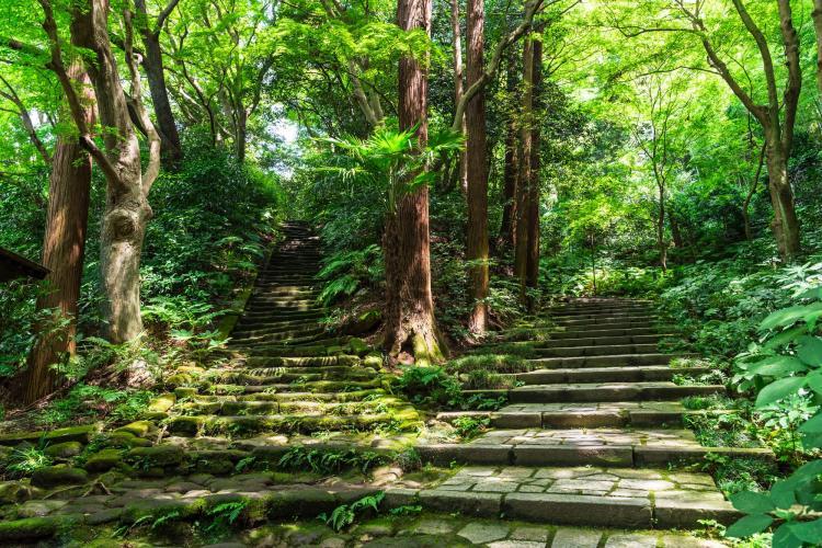 瑞泉寺(鎌倉)
