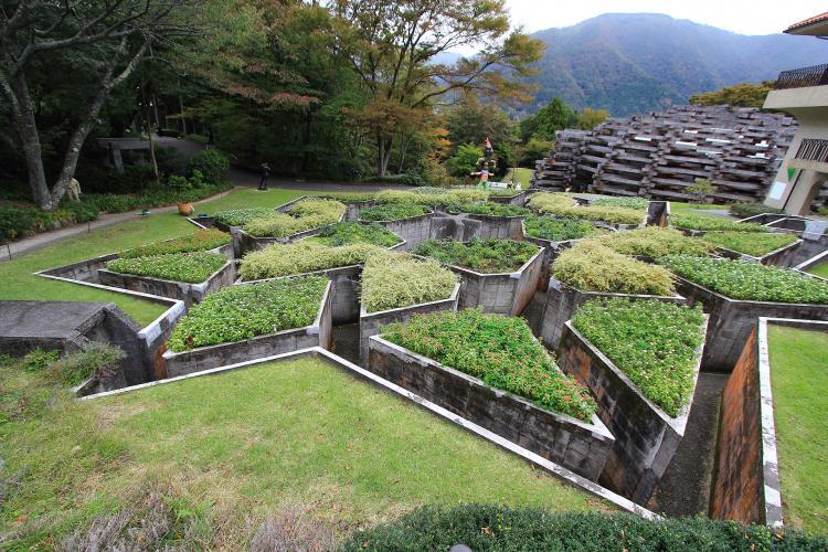 彫刻之森美術館(箱根)