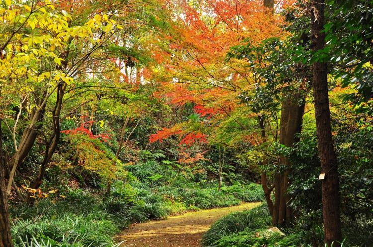 金澤自然公園(金澤動物園)