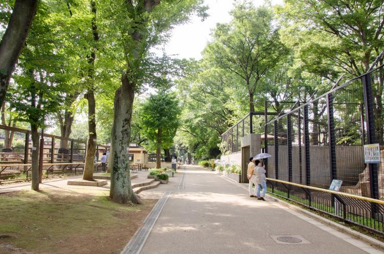 夢見崎動物公園
