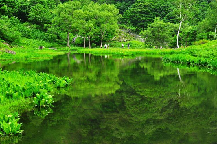 湯澤高原阿爾普之鄉