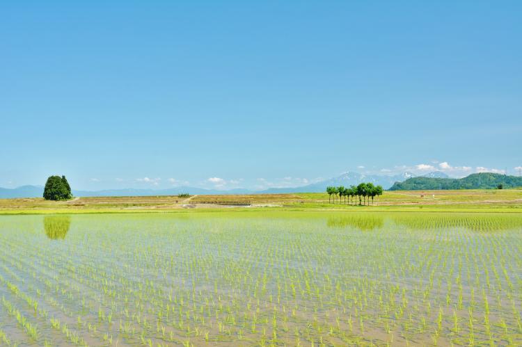 小千谷市池原