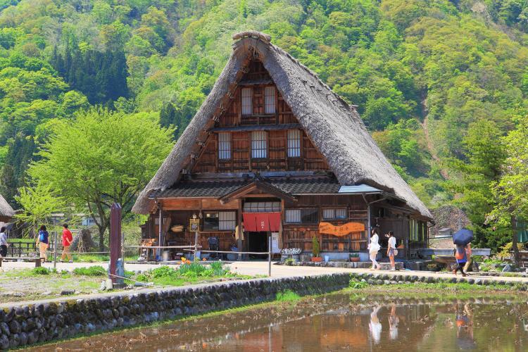 菅沼合掌造村落(傳統建造物群保存地區)