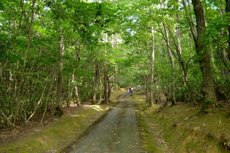 柳田植物公園