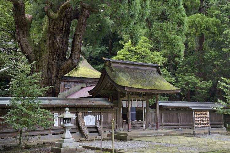若狹姫神社