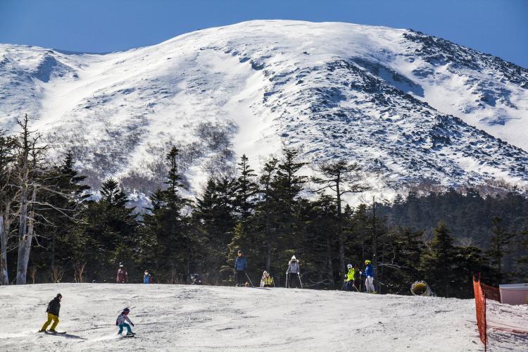 開田高原Mia滑雪場