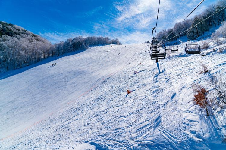 志賀高原 巨人滑雪場