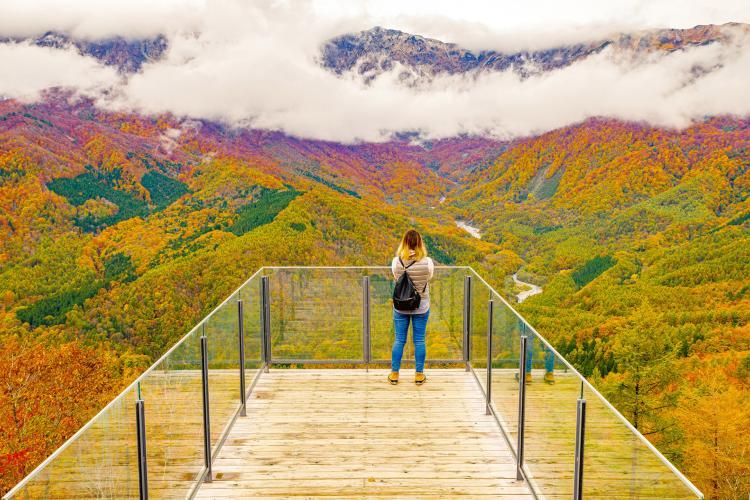 HAKUBA MOUNTAIN HARBOR(白馬岩岳)