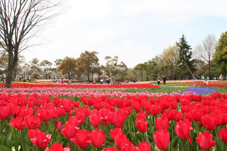 木曾三川公園中心