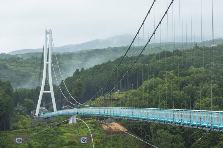 三島空中步道(三島大吊橋)