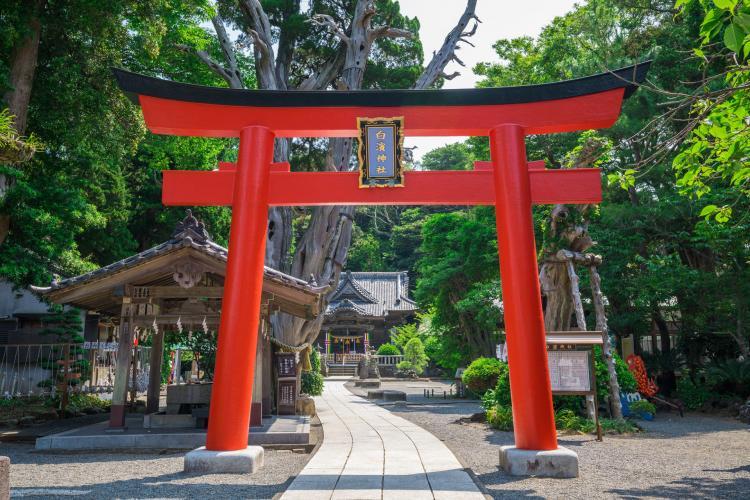 白濱神社(伊古奈比咩命神社)