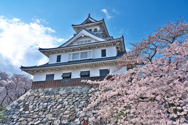 長濱城(長濱城歴史博物館)