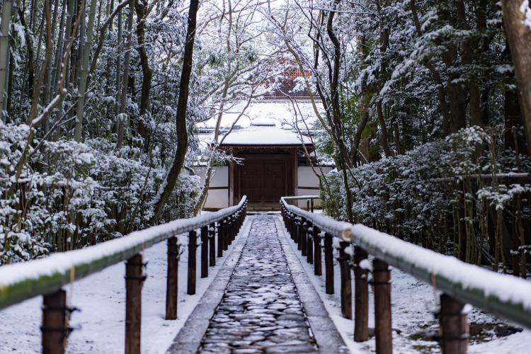 大德寺高桐院