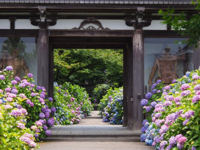 丹州觀音寺