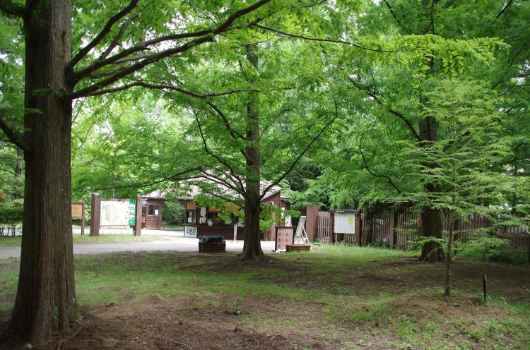 神戶市立森林植物園