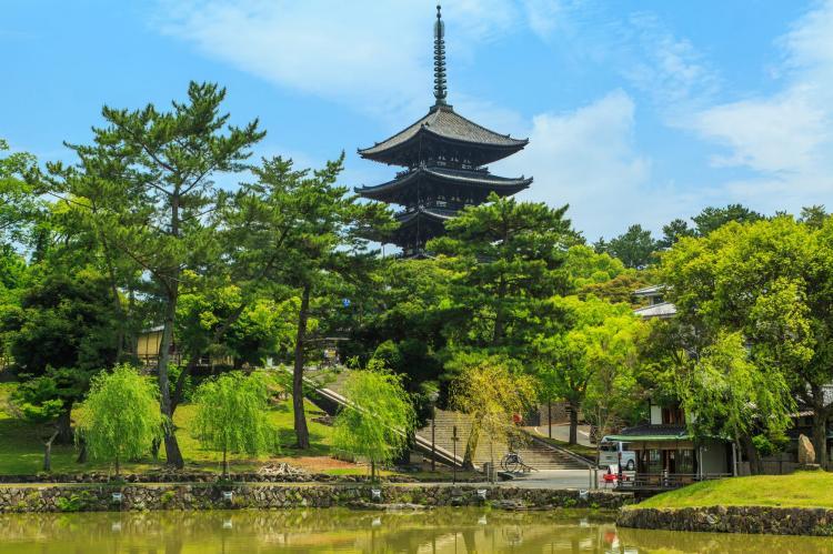 興福寺(奈良公園)