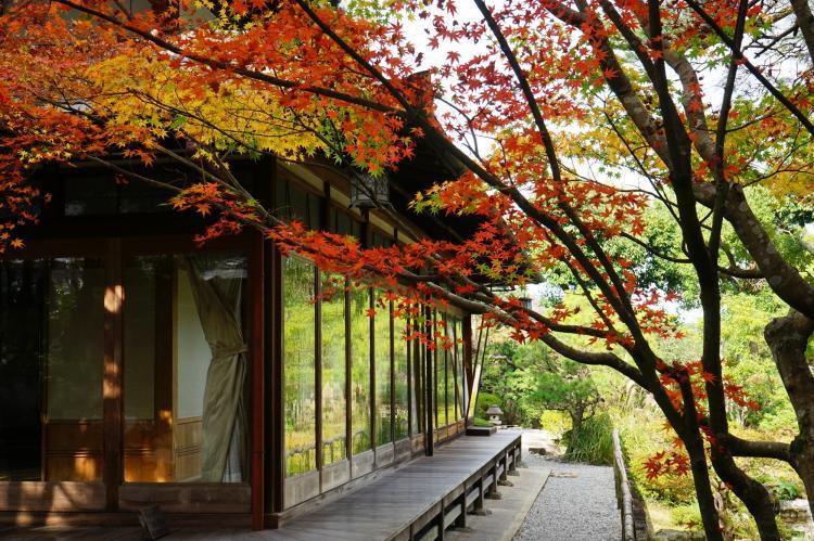 吉城園(奈良公園)
