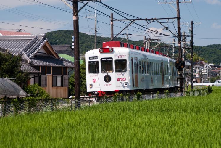 草莓電車、玩具電車・玉電車(和歌山電鐵·貴志川線)
