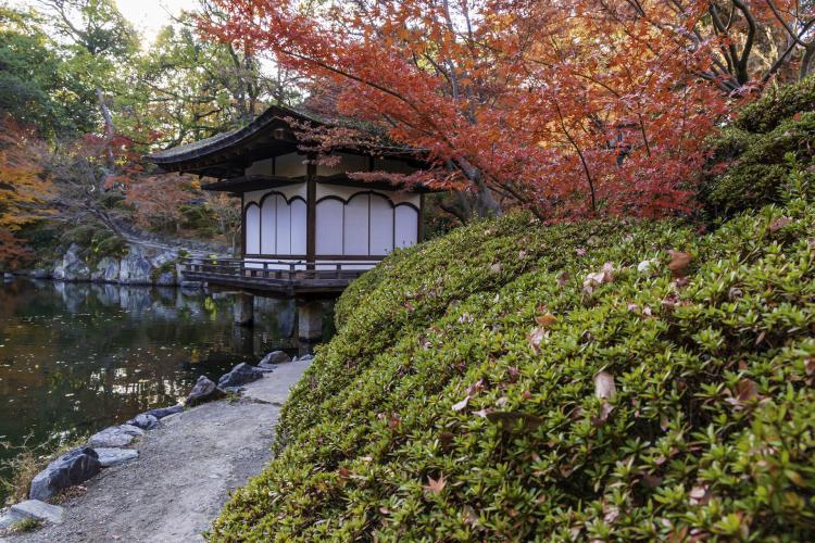 和歌山城・紅葉溪庭園