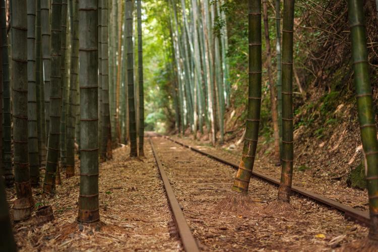 國鐵廢線舊倉吉線
