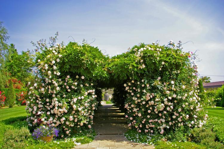松江英式花園