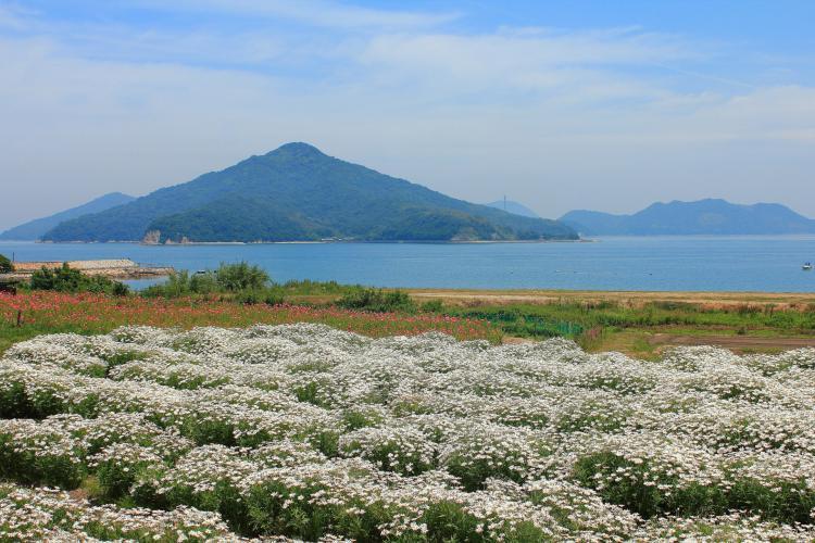 花公園浦島