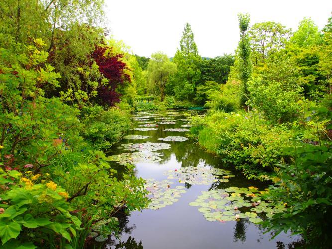 莫奈的庭院