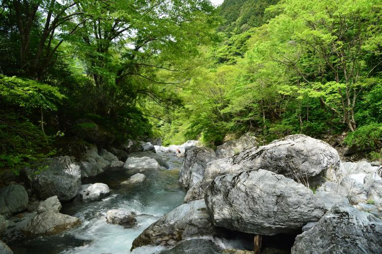 岩屋川溪谷