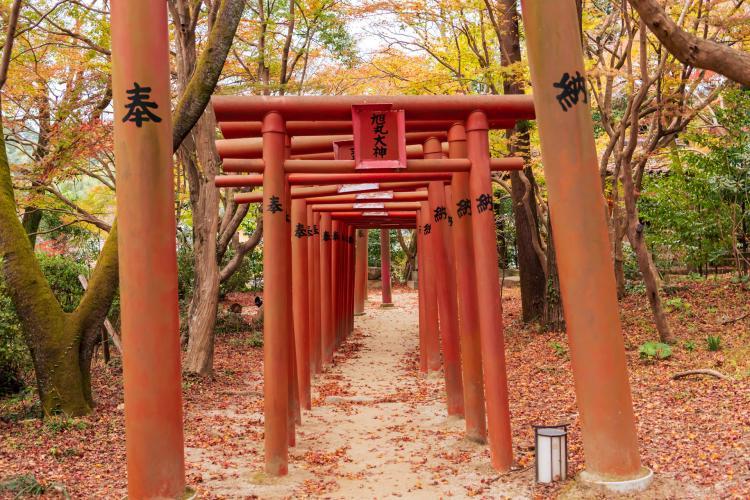 寶満宮竈門神社