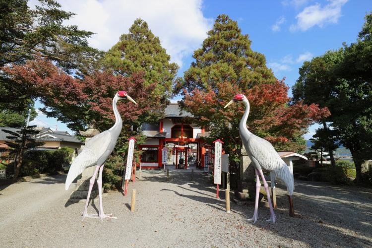 箱崎八幡宮